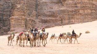 Bedouin Caravan